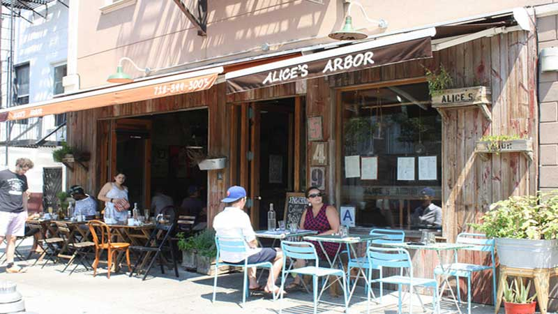 Alice's-Arbor